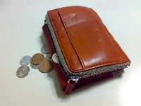 Wallet with spare change
