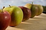 apple-90856_150